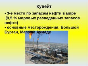 • 3-е место по запасам нефти в мире (9,5 % мировых разведанных запасов нефти)