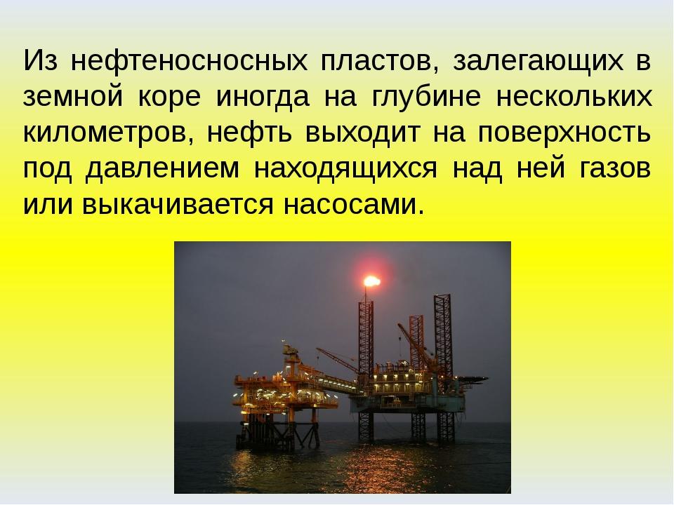 Из нефтеносносных пластов, залегающих в земной коре иногда на глубине несколь...