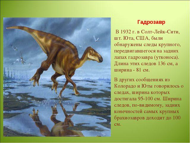 Гадрозавр В 1932 г. в Солт-Лейк-Сити, шт. Юта, США, были обнаружены следы кру...