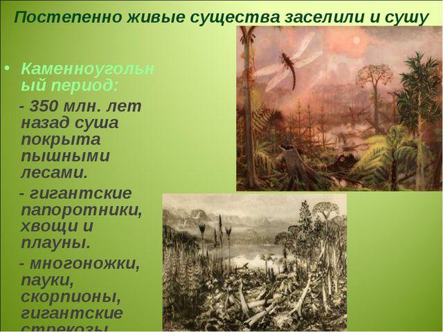 Каменноугольный период: - 350 млн. лет назад суша покрыта пышными лесами. - г...