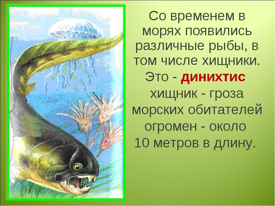 Со временем в морях появились различные рыбы, в том числе хищники. Это - дини...