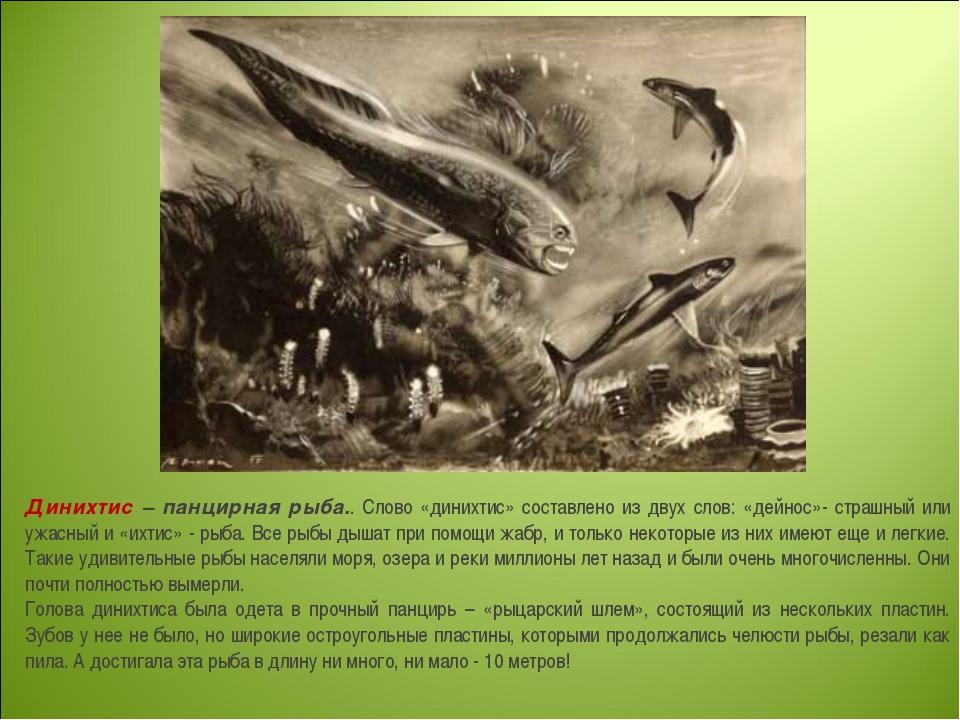 Динихтис – панцирная рыба.. Слово «динихтис» составлено из двух слов: «дейнос...