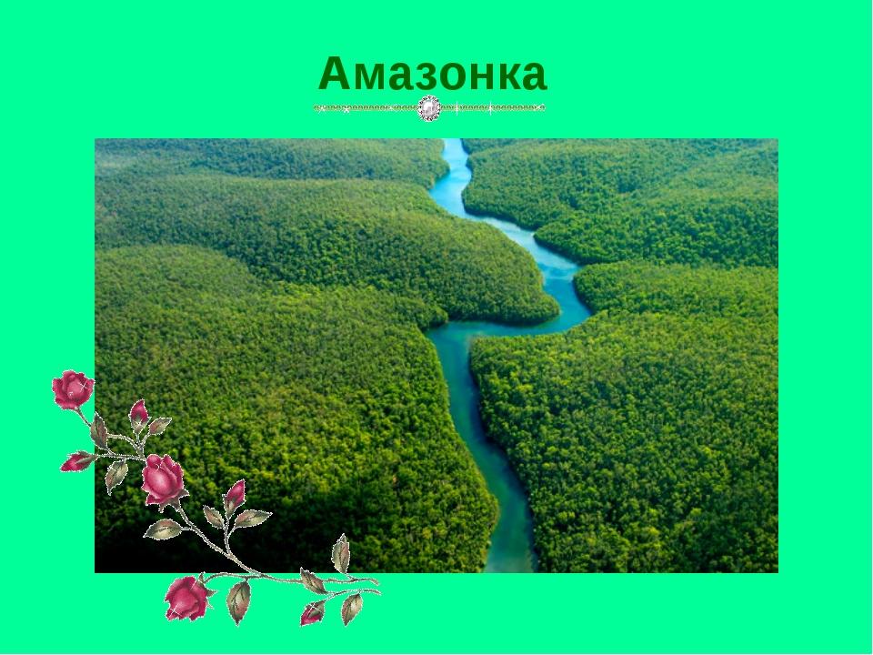 Амазонка Амазонка