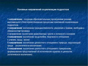 1 направление: создание образовательным учреждением режима максимального благ