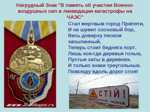 """Нагрудный Знак """"В память об участии Военно-воздушных сил в ликвидации катастр"""
