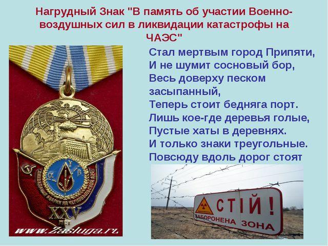 """Нагрудный Знак """"В память об участии Военно-воздушных сил в ликвидации катастр..."""