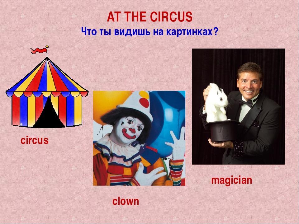 AT THE CIRCUS Что ты видишь на картинках? circus clown magician