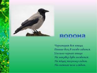 Черноперая вся птица, Раньше всех в гнездо садится. Угольно-черная птица На м