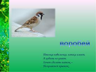 Птичка-невеличка, ножки имеет, А ходить не умеет. Хочет сделать шажок – Получ