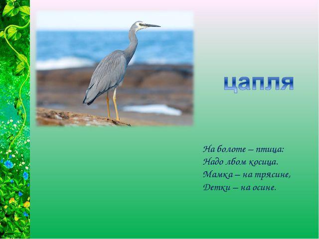 На болоте – птица: Надо лбом косица. Мамка – на трясине, Детки – на осине.