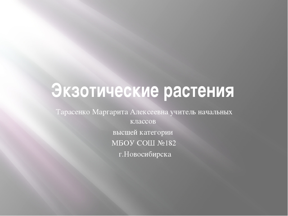 Экзотические растения Тарасенко Маргарита Алексеевна учитель начальных классо...