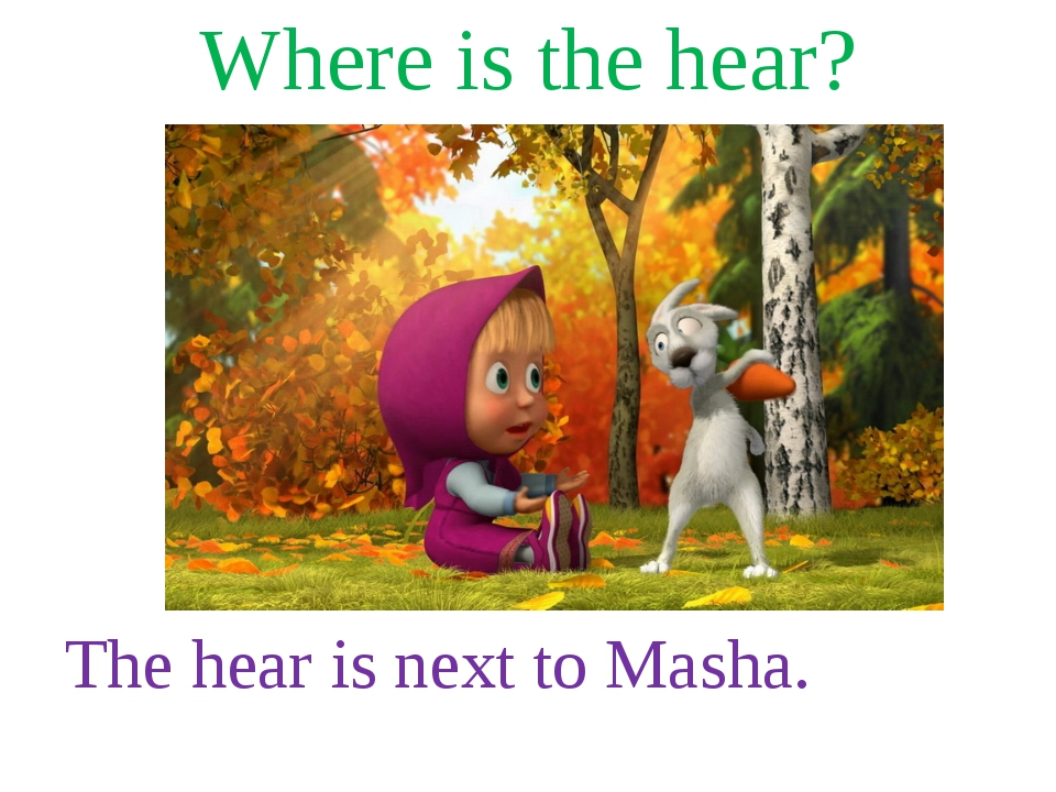 Where is the hear? The hear is next to Masha.