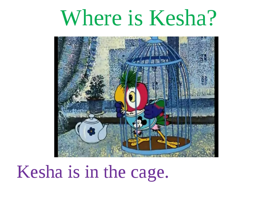 Where is Kesha? Kesha is in the cage.