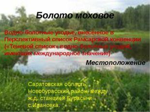 Водно-болотные угодье, внесённое в Перспективный список Рамсарской конвенции