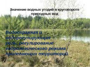Водоохранная и водорегулирующая роль, регулирование гидрологического режима