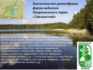 Биологическое разнообразие фауны водоемов Национального парка «Хвалынский»