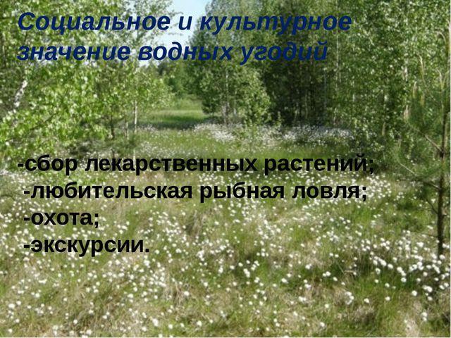 Социальное и культурное значение водных угодий -сбор лекарственных растений;...