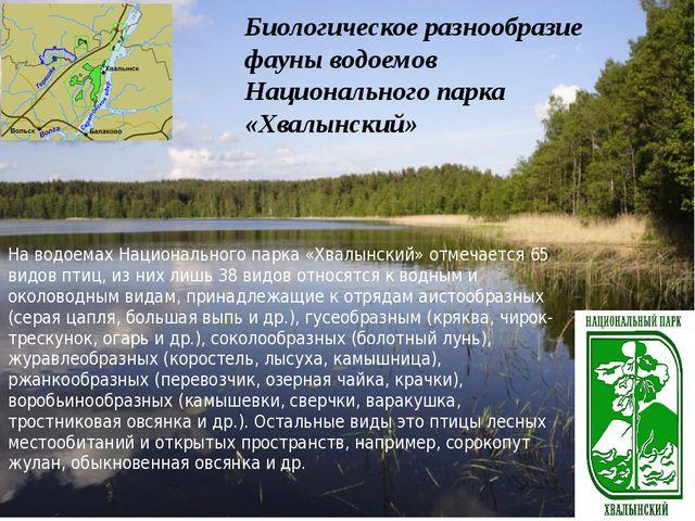 Биологическое разнообразие фауны водоемов Национального парка «Хвалынский» ...
