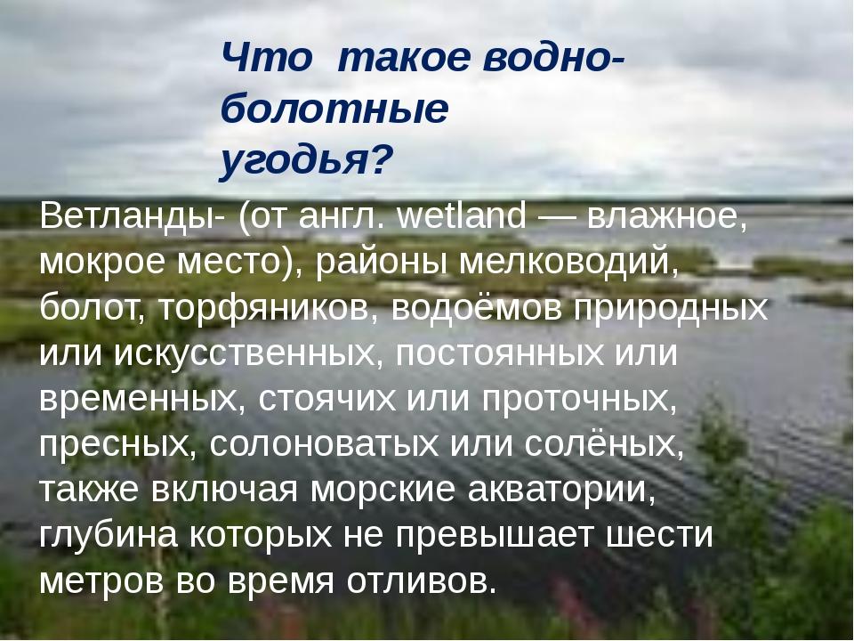 Что такое водно-болотные угодья? Ветланды- (от англ. wetland — влажное, мокро...