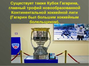 Существует также Кубок Гагарина, главный трофей новообразованной Континентал