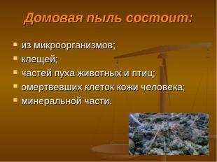 Домовая пыль состоит: из микроорганизмов; клещей; частей пуха животных и птиц