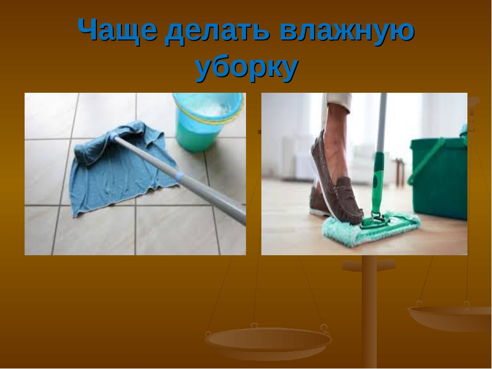 Чаще делать влажную уборку