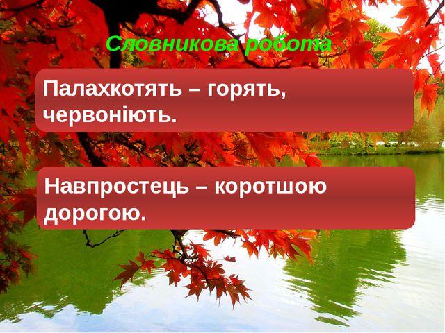 Словникова робота Палахкотять – горять, червоніють. Навпростець – коротшою д...