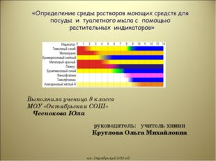 руководитель: учитель химии Круглова Ольга Михайловна пос. Октябрьский 2010