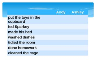 Andy Ashley put the toys in the cupboard fedSparkey made his bed washed dish