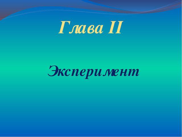 Глава II Эксперимент