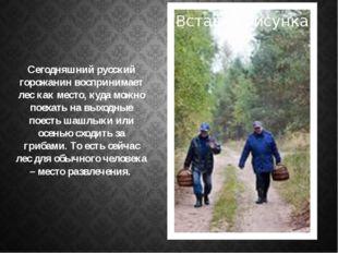 . Сегодняшний русский горожанин воспринимает лес как место, куда можно поехат