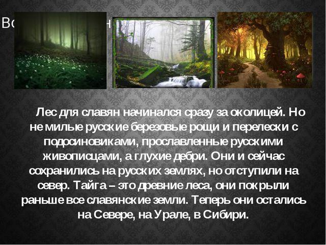 Лес для славян начинался сразу за околицей. Но не милые русские березовые ро...