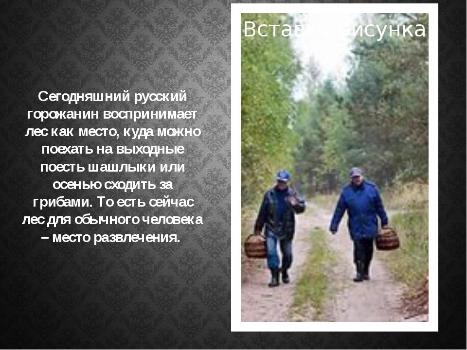 . Сегодняшний русский горожанин воспринимает лес как место, куда можно поехат...