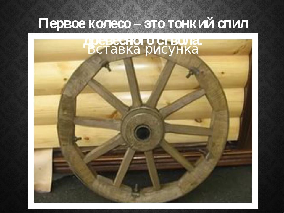 Первое колесо – это тонкий спил древесного ствола.