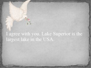 I agree with you. Lake Superior is the largest lake in the USA.