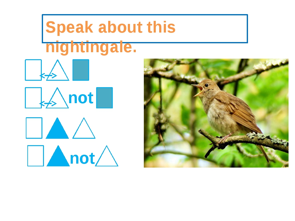 Speak about this nightingale. not not