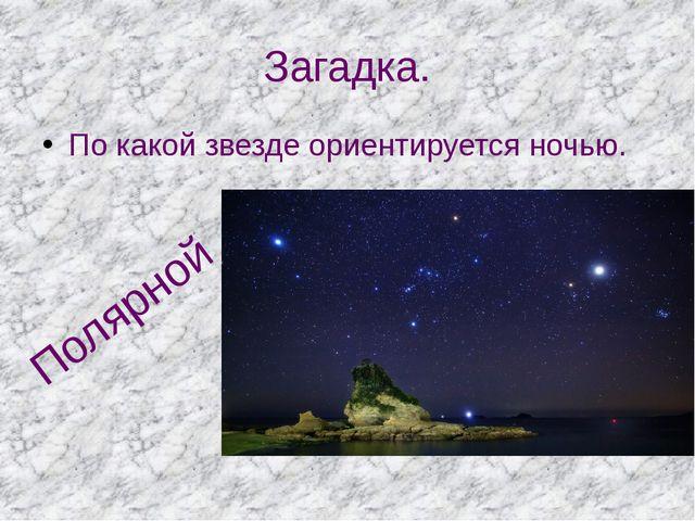 Загадка. По какой звезде ориентируется ночью. Полярной