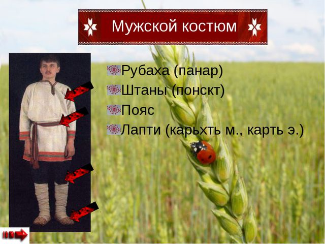 Рубаха (панар) Штаны (понскт) Пояс Лапти (карьхть м., карть э.)