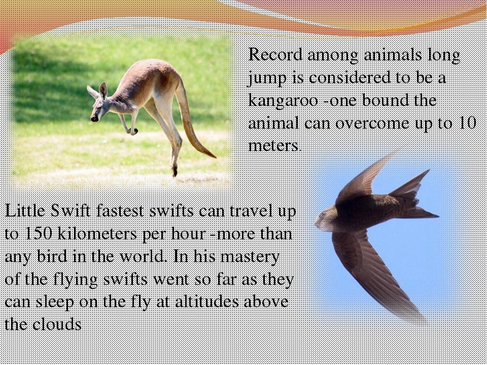 Record amonganimalslong jumpis considered to bea kangaroo-one boundthe...
