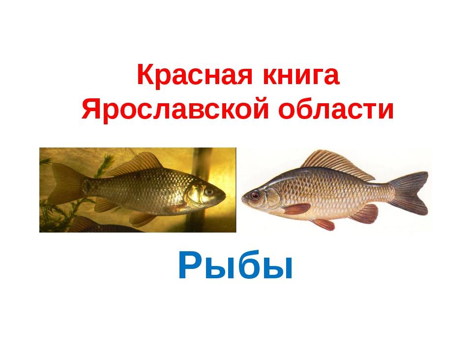 Красная книга Ярославской области Рыбы