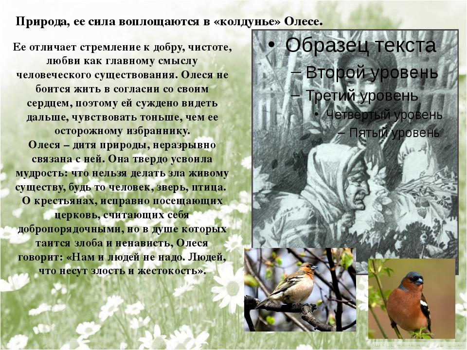 Природа, ее сила воплощаются в «колдунье» Олесе. Ее отличает стремление к доб...