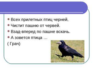 Всех прилетных птиц черней, Чистит пашню от червей. Взад-вперед по пашне вска