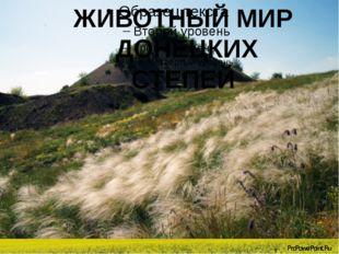 ЖИВОТНЫЙ МИР ДОНЕЦКИХ СТЕПЕЙ ЖИВОТНЫЙ МИР ДОНЕЦКИХ СТЕПЕЙ ProPowerPoint.Ru