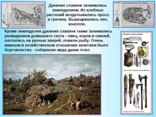 Древние славяне занимались земледелием.Из хлебных растений возделывались про