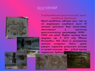Костёнки Государственный археологический музей-заповедник «Костенки» Музей-за