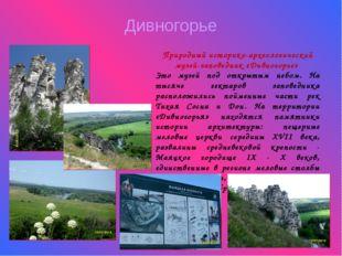 Дивногорье Природный историко-археологический музей-заповедник «Дивногорье» Э