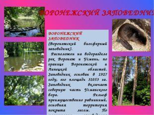 ВОРОНЕЖСКИЙ ЗАПОВЕДНИК (Воронежский биосферный заповедник). Расположен на вод