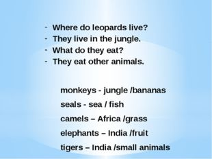 Where do leopards live? They live in the jungle. What do they eat? They eat o