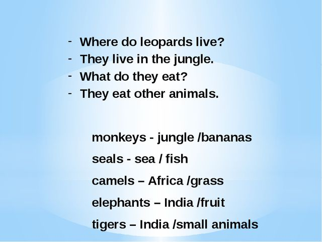 Where do leopards live? They live in the jungle. What do they eat? They eat o...