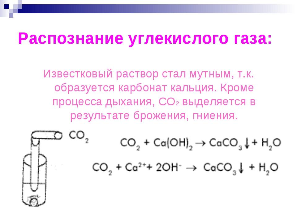 Распознание углекислого газа: Известковый раствор стал мутным, т.к. образуетс...
